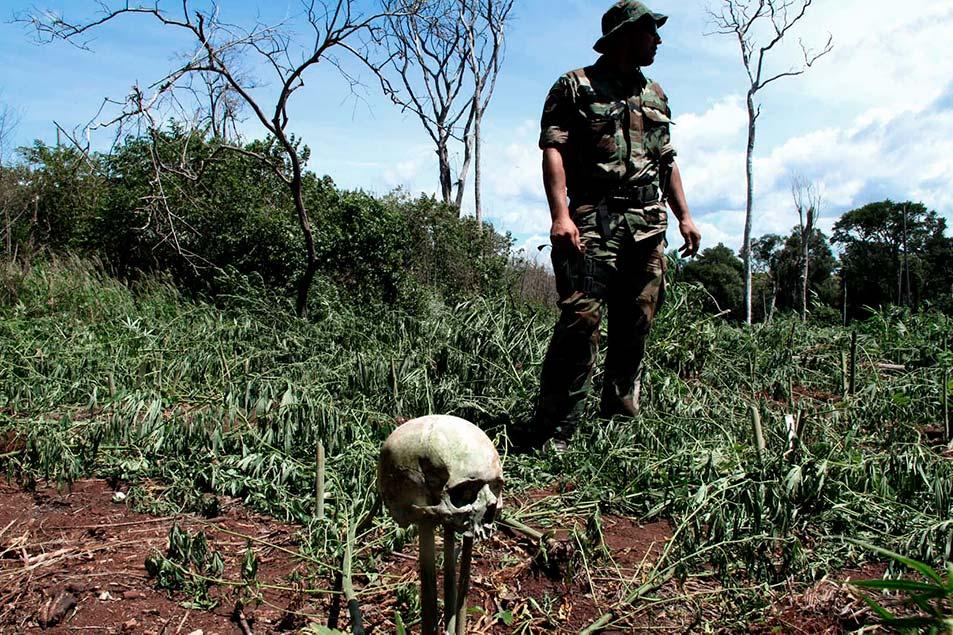 Militar en un campo de coca con un cráneo.