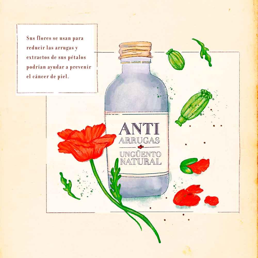 Amapola-anti-arrugas